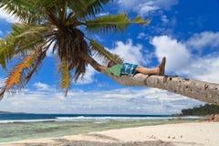 strandmannen gömma i handflatan tropiskt arkivfoto