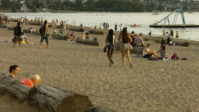Strandmensen die twee meisje het overgaan spreken stock video