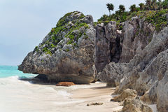 strandmexico tulum yucatan Royaltyfria Bilder