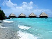 strandmorgon Arkivfoto