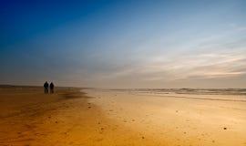 strandnatt Royaltyfri Foto