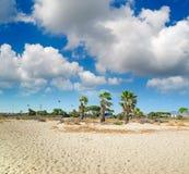 strandoklarheter över Royaltyfri Bild