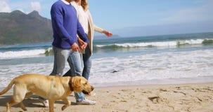 strandpar mature att gå stock video