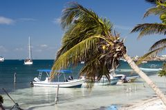 strandparadis Royaltyfria Foton