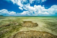 Strandparadis på den tropiska ön av Okinawa Arkivfoto