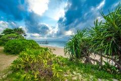 Strandparadis på den tropiska ön av Okinawa Royaltyfria Bilder