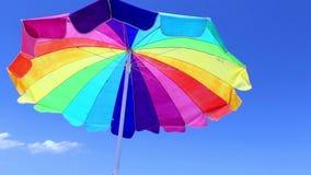 Strandparaplu met Vogel stock videobeelden