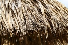 Strandparaplyer av palmblad på stranden royaltyfri fotografi