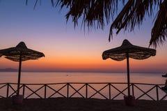 Strandparaplyer på sanden sätter på land på gryning Royaltyfri Fotografi