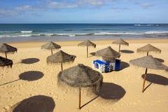 strandparasoller royaltyfri bild