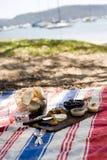 strandpicknicksommar Fotografering för Bildbyråer