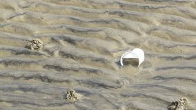 strandplast-avfalls Fotografering för Bildbyråer