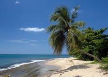 strandplats royaltyfri fotografi