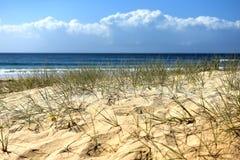 Strandplats med förgrund för sanddyn Royaltyfri Fotografi