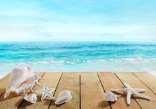 Strandpromenad med skal Royaltyfri Fotografi