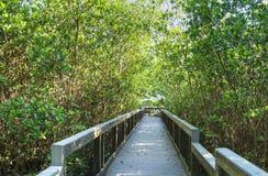 Strandpromenad på Ding Darling Nature Preserve Arkivfoton