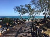 Strandpromenad på en ö av kusten av Zanzibar Arkivbilder