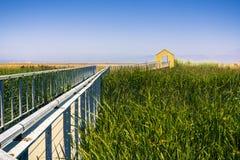 Strandpromenad som sträcker över ett träsk arkivfoto