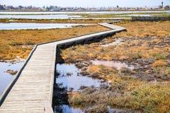 Strandpromenad till och med Alviso träsk, södra San Francisco Bay, San Jose, Kalifornien fotografering för bildbyråer