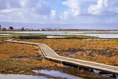 Strandpromenad till och med Alviso träsk, San Jose, södra San Francisco Bay, Kalifornien royaltyfria bilder