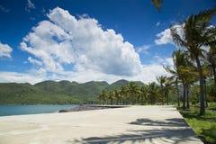 Strandpromenaden på stranden med palmträd och moln Royaltyfri Bild