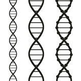 Strands of DNA Stock Images