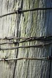 Strands of rusty barb wire on a fence post. Strands of rusty barb wire wound around an old weathered cracked wooden fence post in a close up full frame view Royalty Free Stock Photos