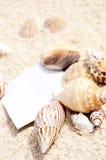 Strandsand Starfish des unbelegten Papiers schält Sommer lizenzfreies stockfoto