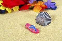 Strandsandal med Shell och tropiska blommor Royaltyfri Bild