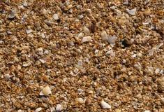 Strandsandbakgrund Fotografering för Bildbyråer