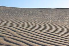 Strandsanddyn Arkivfoton