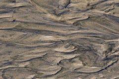 StrandSandkonst i Oregon Arkivbilder
