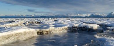 Strandsatt havsis royaltyfri foto