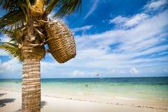 Strandscène die met palm een geweven mand houden Royalty-vrije Stock Fotografie