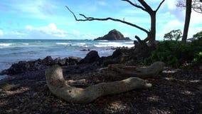 Strandscène in Maui Hawaï stock footage