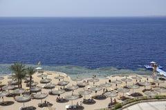 Strandschirme mit Ruhesesseln auf dem sandigen Strand des Roten Meers Lizenzfreie Stockfotografie