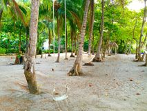 Strandschommeling, gazebo, hangmatten Costa Rica Stock Afbeelding