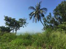 Strandseite Pulau Besar stockbild