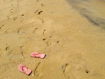 Strandsida, Sri Lanka royaltyfria foton