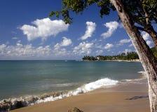 strandsikt arkivfoto