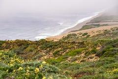 Strandsikt från slingan till fyren i punkt Reyes National Shoreline, Kalifornien arkivfoto