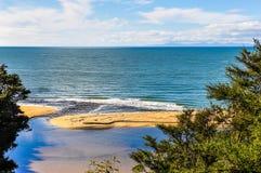 Strandsikt i Abel Tasman National Park, Nya Zeeland Arkivbild