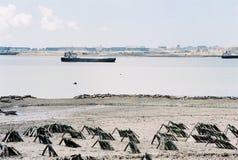 Strandsikt i staden Xiamen royaltyfri foto