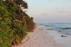 Strandsikt på den guld- timmen Arkivfoton