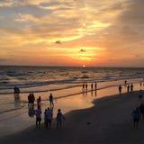 Strandskönhet Arkivfoto