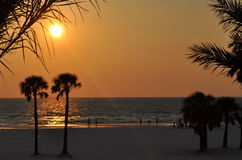 Strandsolnedgång i florida Fotografering för Bildbyråer