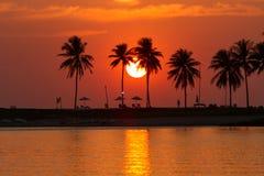 Strandsolnedgång med kokospalmen bredvid lagun Arkivfoto