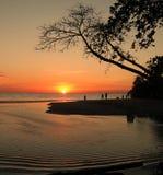 Strandsoluppsättning Royaltyfri Bild