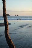 Strandsoluppsättning Royaltyfria Bilder
