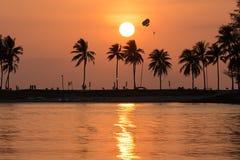 Strandsonnenuntergang mit Kokosnussbaum Lizenzfreies Stockbild